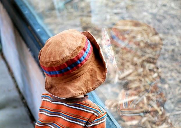 Educazione: quando i figli sono educati sono anche più felici, questo è il nostro dovere di genitori | Genitorialmente