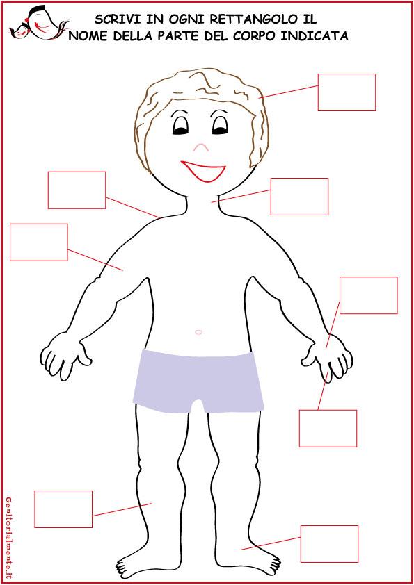 Famoso Come insegnare le parti del corpo umano | Genitorialmente GT84